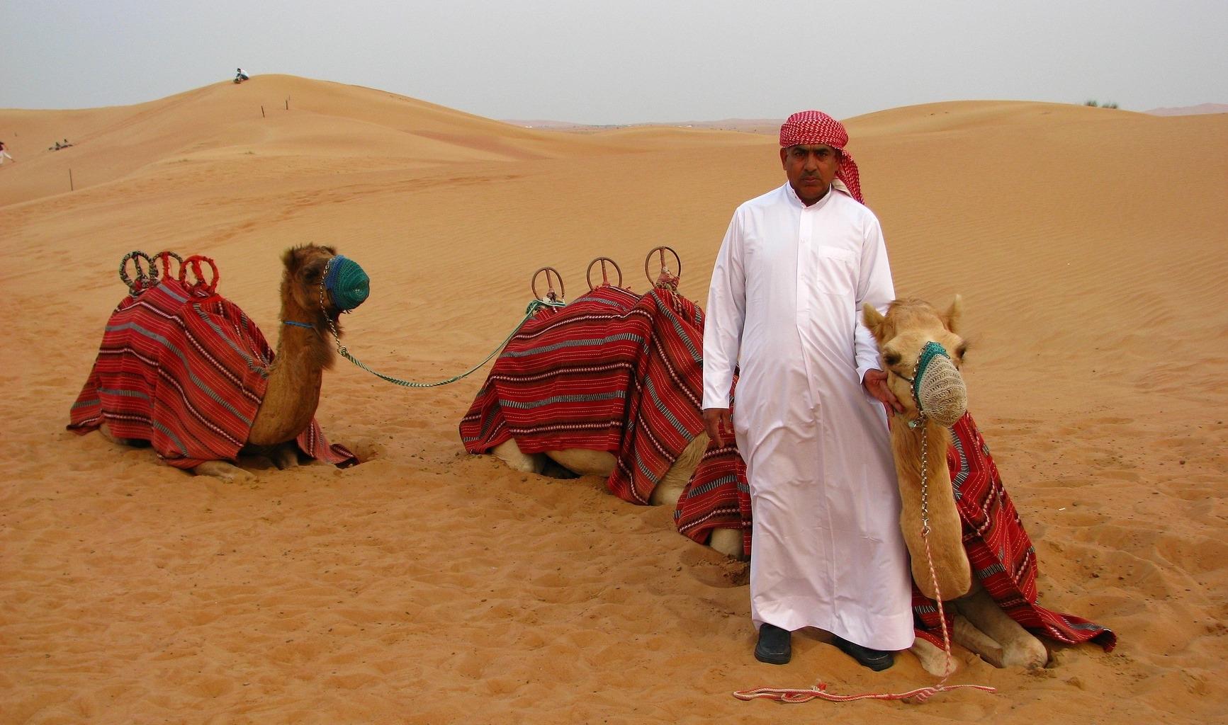 Desert Safari Dubai Tourist Guide