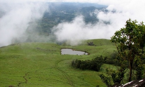 Wayanad Tourist Guide and Site Seeing Tour Packages