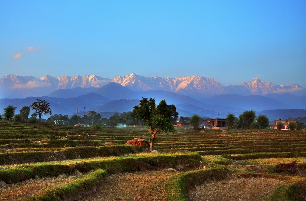 Kangra Valley Himachal