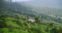 Ranikhet Tourist Guide
