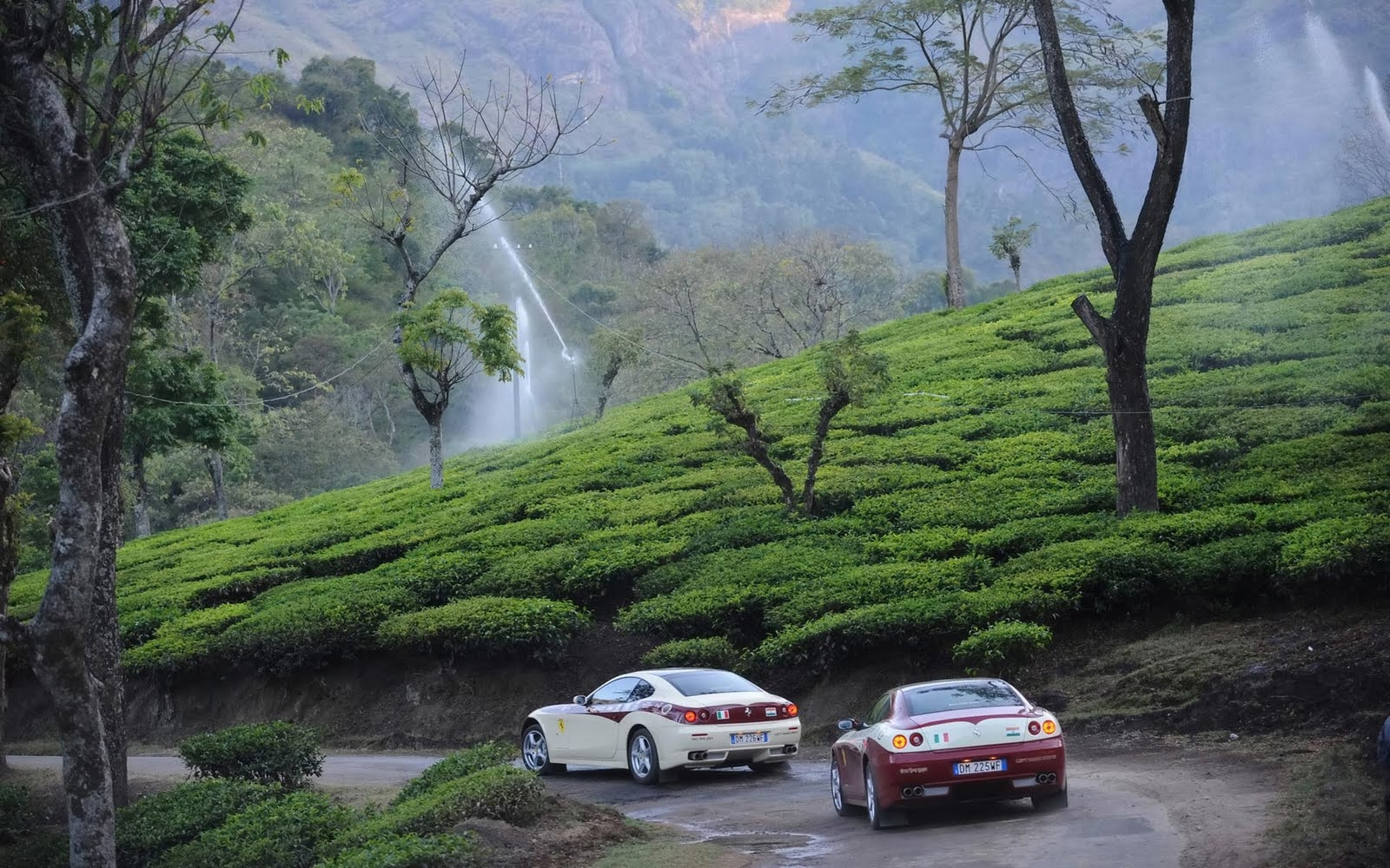 Masinagudi Tourist Guide - Rich and Famous Hill station of South India