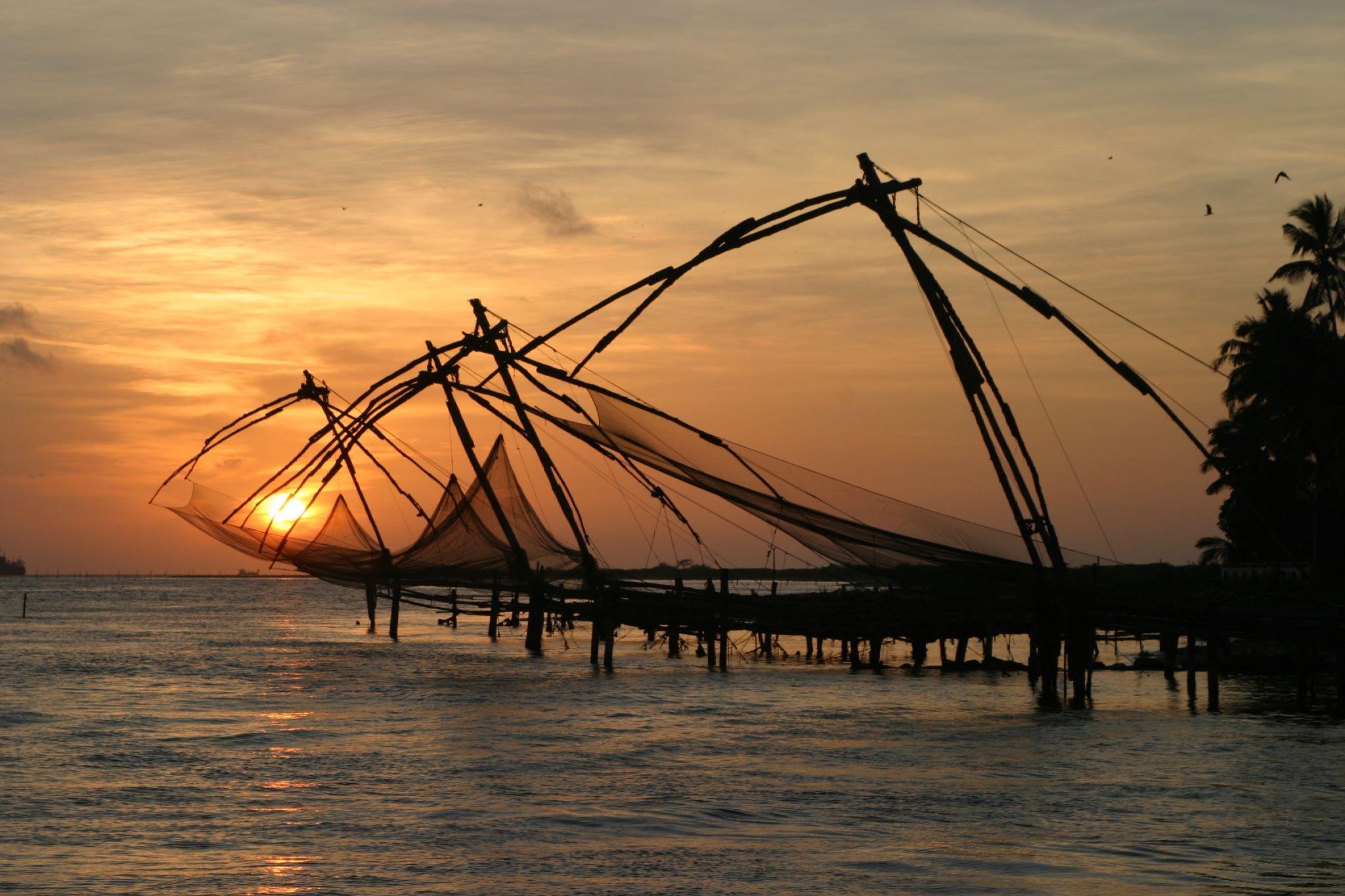 Best of Kerala Tour Package in Covering Kumarkom Alleppey Periyar Munnar Eravikulam National Park