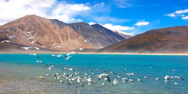 Indian Himalayan Holiday for European Tourists - Incredible North India