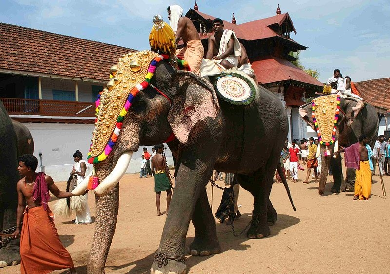 Incredible India -  Best Of South India Tour