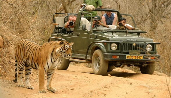 Delhi Agra Jaipur Golden Triangle Tour with Ranthambore