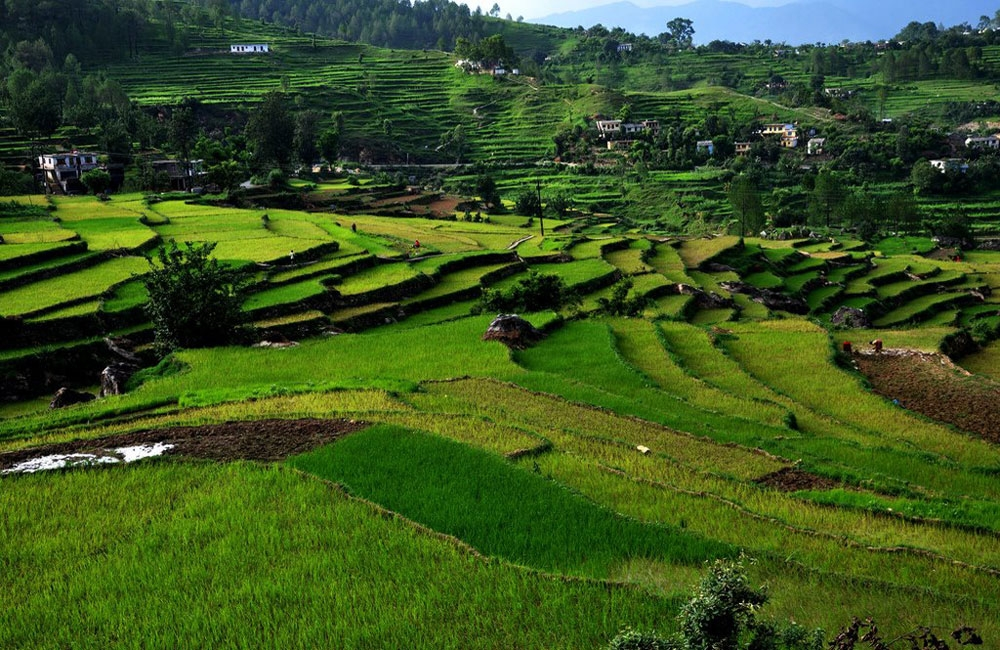 Mesmerizing Uttarakhand Tour Package
