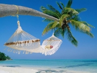 Cochin Kumarakom Alleppey Boat Ride Relaxation Tour  Package