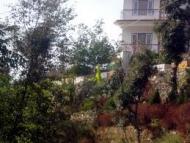 Sunrise villa Shimla Holiday Honeymoon Package