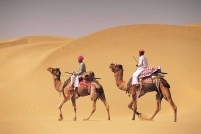 Rajasthan Local site seeing tours