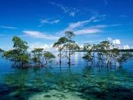 Havelock Island Holiday Honeymoon Packages