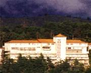 Hotel Surya Mcleod Holiday Honeymoon Package