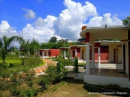 Shri Krishna Jungle Resort Holiday Honeymoon Package
