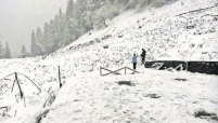 Kullu Manali High Season Packages ( Sep till Feb & March till June)