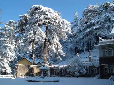 Chandigarh to Shimla Tour Package - Famous Paradise of Himachal Pradesh