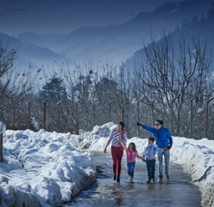 3 Star Hotel in Manali - 3 Star Package for Manali