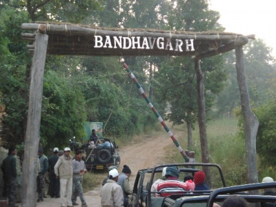 Bandhavgarh - Kanha Wildlife Package From Mumbai