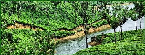 Munnar Holidays Package
