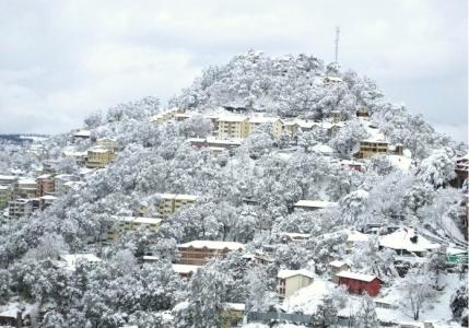 Delhi to Shimla Tour Package