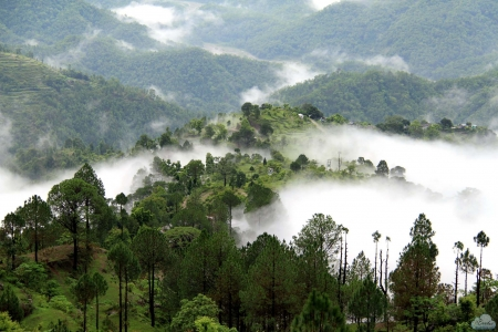Best of Garhwal – A peaceful Adobe of Himalayan tour
