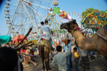 Pushkar Fair mela tour package with site seeing