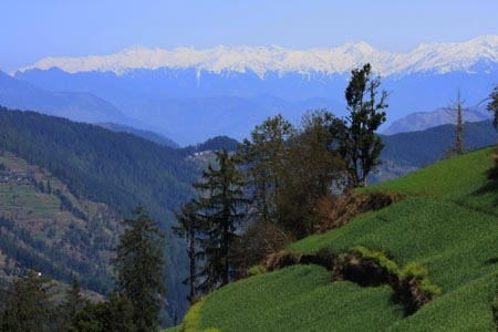 Shoja Thanedar Tirthan Valley Tour- Most Beautiful Destination in  India