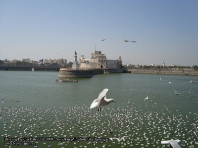 Gujrat Marine Adventure Package – Dwarka – Jamnagar – Narara - Khijadiya Bird Sanctuary