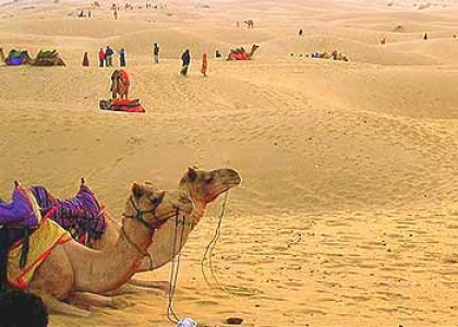 Thar Desert Tour with Rajasthani Food Camping and Desert Safari in Bikaner
