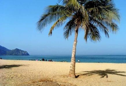Dubai Fujairah Khor-Fakkan Kalba  Tour Package- UAE East Coast Tour