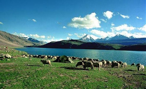 Chandratal Lake Trek Package with Camping