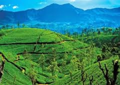 Srilanka Tour package from Chennai
