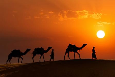 Jodhpur - Jaisalmer - Bikaner - Jaipur Tour Package