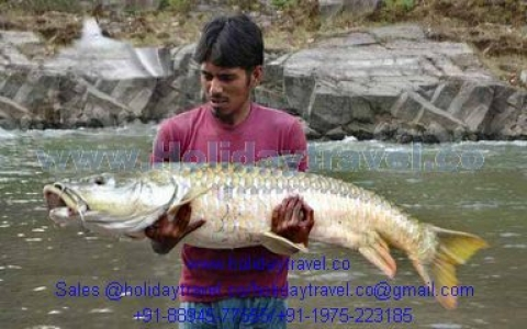 Best Fishing Vacation Tours and Fishing Packages in Indian Himalayan Resorts