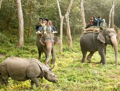 Binsar Wild Life Tour Package
