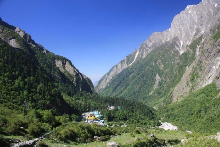 Joshimath Tour Package with Auli & Valley of Flowers