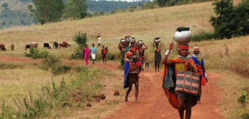 Tribal Tour Package of North East –Ancient Life style of Tribal inhabitant of North East India