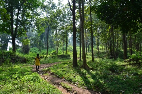 Bangalore - Wayanad Weekend Trip - South India's famous Historical Cave city
