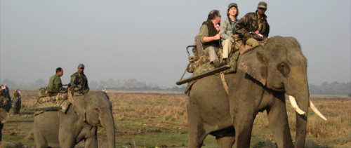 Wild Adventures of Assam tour package