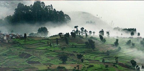 A true paradise for love - Kodaikanal Holidays Packages