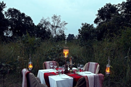 Perfect Holiday honeymoon in Central India Remote Jungle Resort