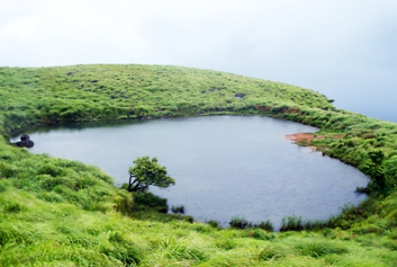 Wayanad local siteseeing Tour