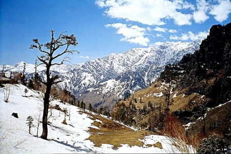 Shimla Manali Honeymoon Package with Bonus of Mandi & Parashar Lake - World's Best Honeymoon @ Rs11850/-