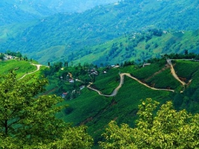 Gangtok Yumthang Package Tour From Darjeeling