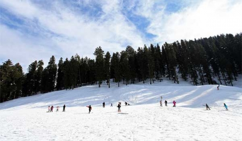 Shimla Apple belt Tour with Narkanda Kotgarh Shoja Jibhi
