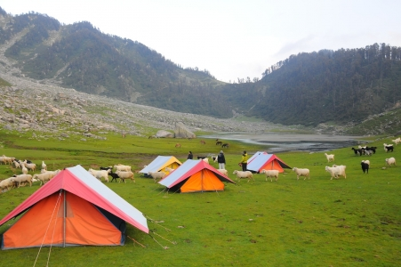 Triund and Kareri lake Trekking and Camping tour