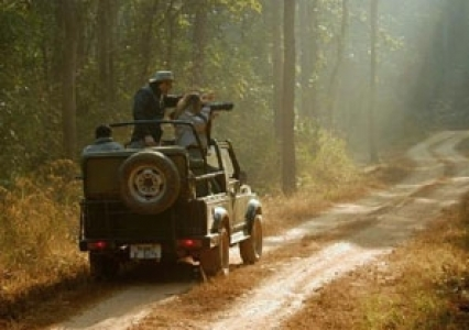 Indian Wildlife Game Safari Holiday package