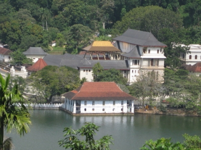 SriLanka Tour package from India Chennai - Covering Colombo Bentota Habarana Kandy Nuwara Eliya