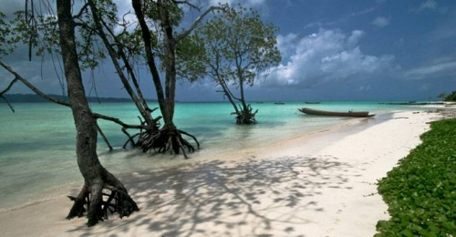Best Honeymoon Island in world -Indian Ocean- Andaman island HavelockBaratang Neil  island Honeymoon