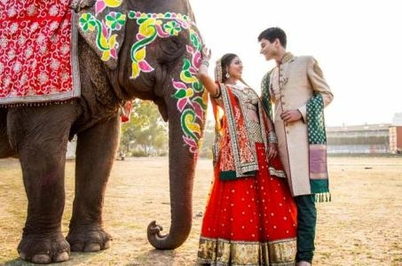 Best Madhyapradesh Honeymoon Tour Package-Pachmarhi Bandhavgarh Khajuraho