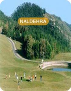 Shimla Naldehra Tour Package – Indias Famous Golf Course Destination in Himachal Pradesh