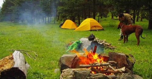 Kumaon Camping Tour – Mukteshwar with Almora Chaukori Kausani